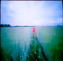 colours in pinhole